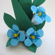 Origami flower forget me not how to fold an origami flower forget me not and leaf display ccuart Image collections