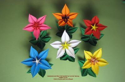 Origami carambola flower pdf flowers healthy origami flowers and dragons by bob carambola mightylinksfo mightylinksfo